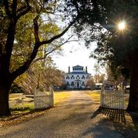 Hayes Plantation